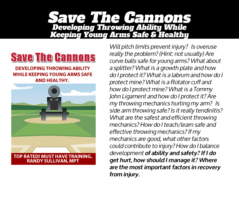 save-the-cannons